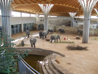 Cologne Zoo Köln elephant house